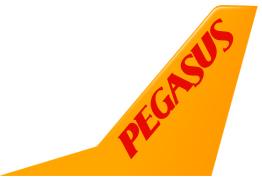 Pegasus Soçi'ye Uçuyor